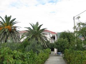 Dom wypoczynkowy Wyspa Rab, Banjol 119259