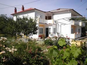 ház Rab-sziget, Palit 119773
