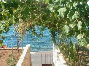 ház Brac-sziget, Splitska 134981