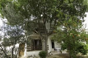 Casa Biograd 170421 Dalmazia