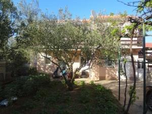 Casa Isola di Murter, Betina 186075