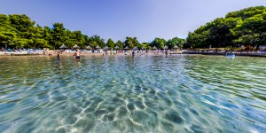 Holiday resort Pine Beach Dalmatia